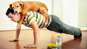 doggy pushup