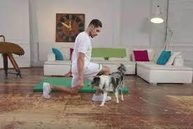 puppy lunge