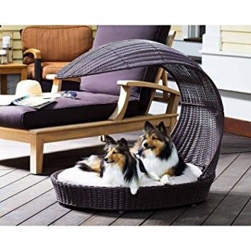 dog-beds-9